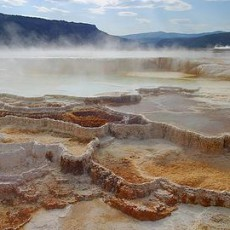 Yellowstone-national-park-chuckies-kosher-adventure-tours