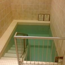 ohev-shalom-talmud-torah-mikvah-jewish-ritual-bath-pool
